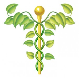 holistic natural or alternative medicine symbol